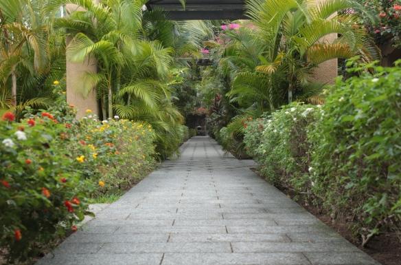Mauritius June 2013  135