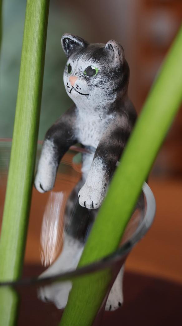Hanging kitty