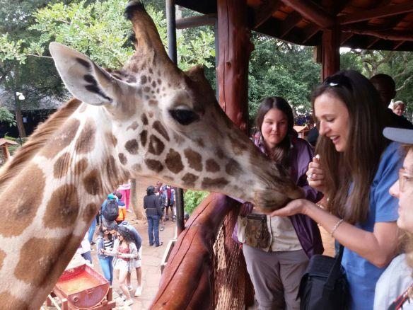 GiraffeMandy