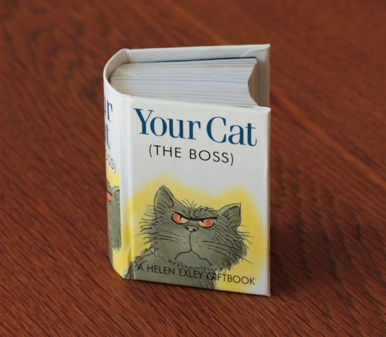 Your cat book